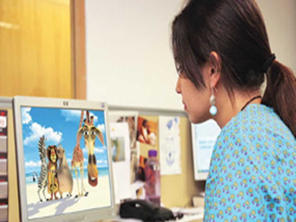Bulk of job opportunities in animation industry.