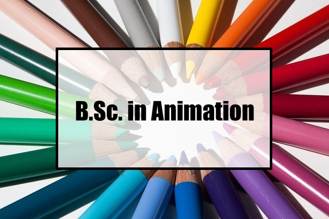 B.Sc. animation & multimedia